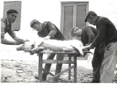 matanza_cerdo