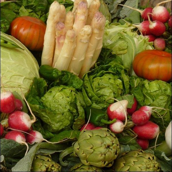 pack-verduras-navarras-temporada