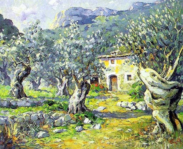 olivos baleares