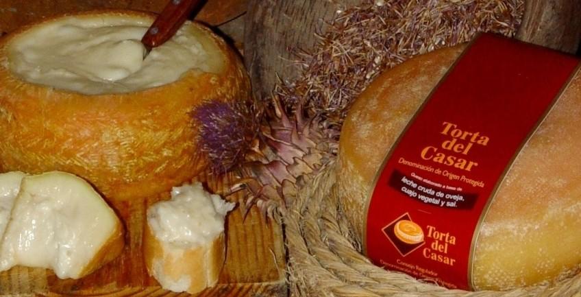 Torta-del-Casar-para-web-e1424915735157