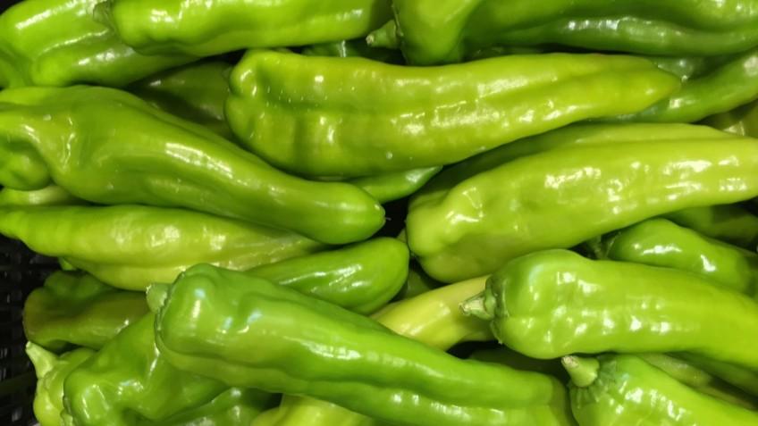 pimientos verdes 1