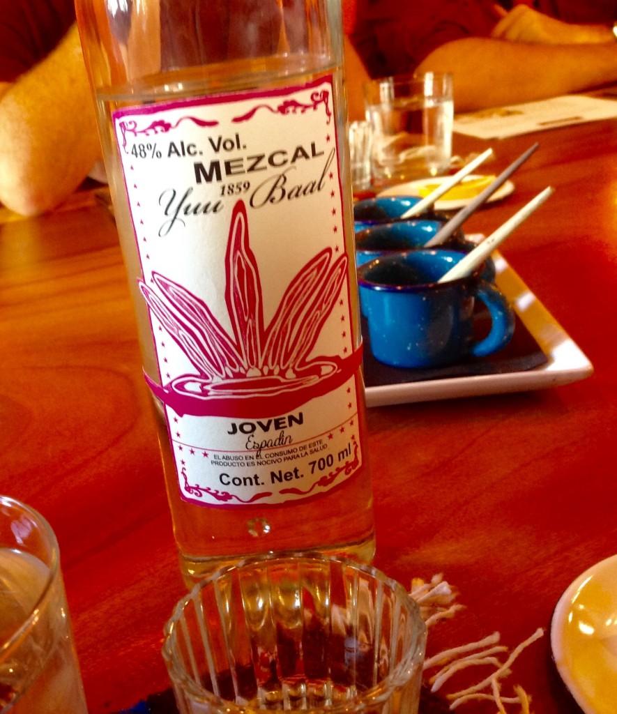 Oaxaca el grito