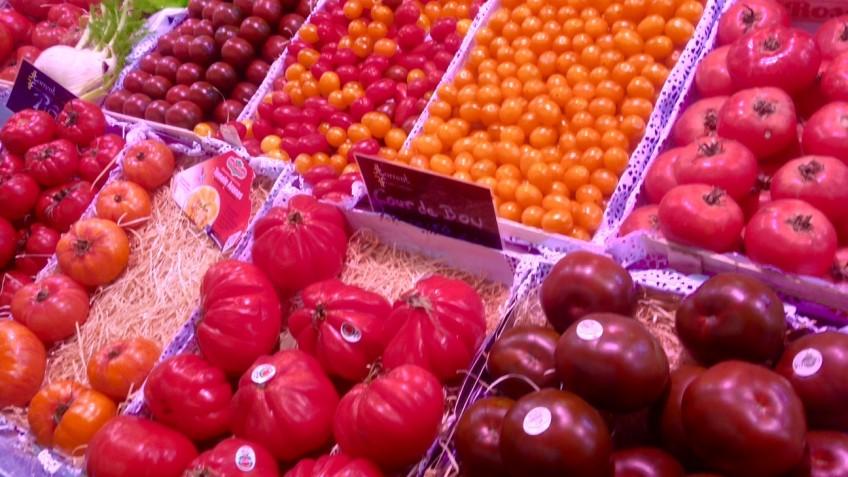 tomates ssanta caterina