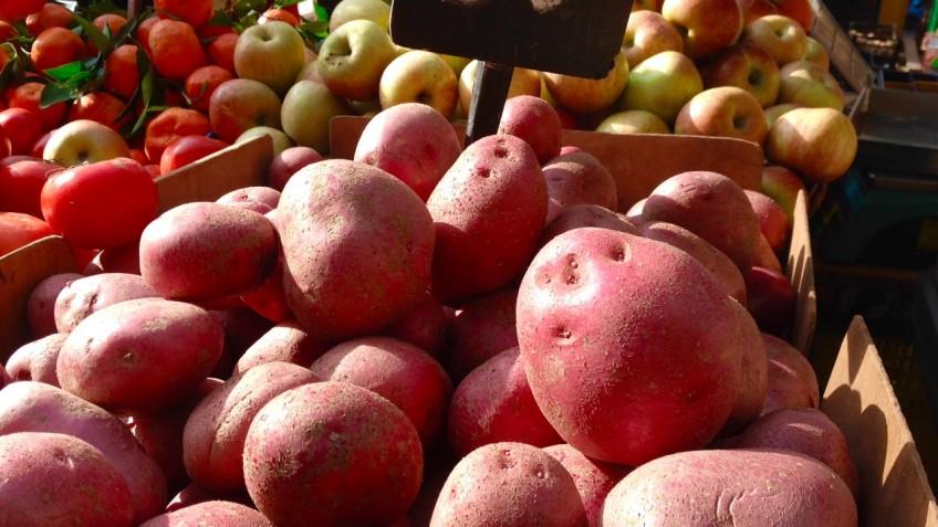 patata roja 1