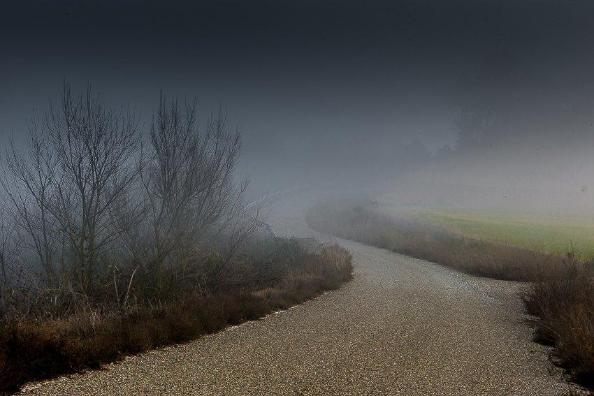 toñin camino niebla