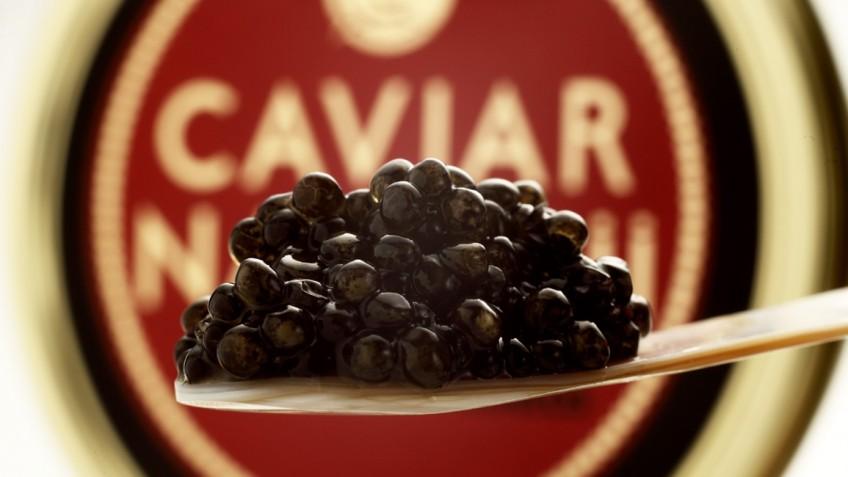 Cucharita de caviar fondo lata IMG_9002