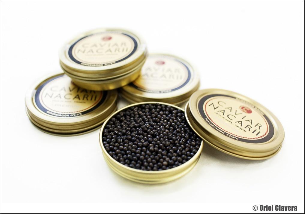 ProcŽs d'elaboraci— del Caviar Nacarii, a la Piscifactoria de Les. Baix Aran, Val d'Aran.