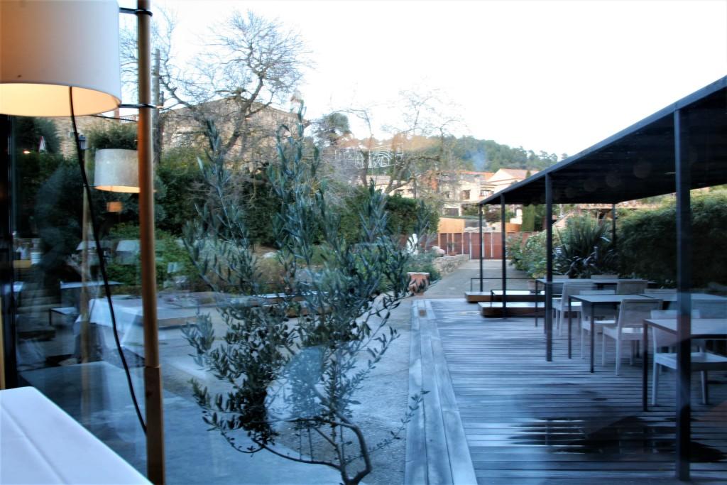 Calendula jardin de invierno2