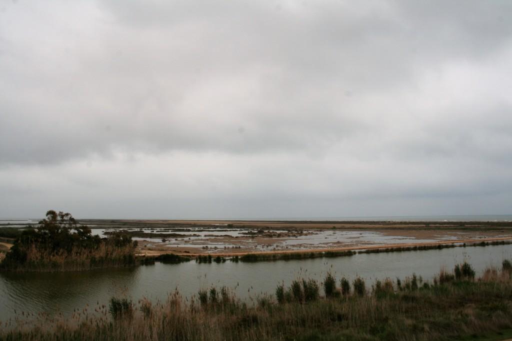 delta paisaje
