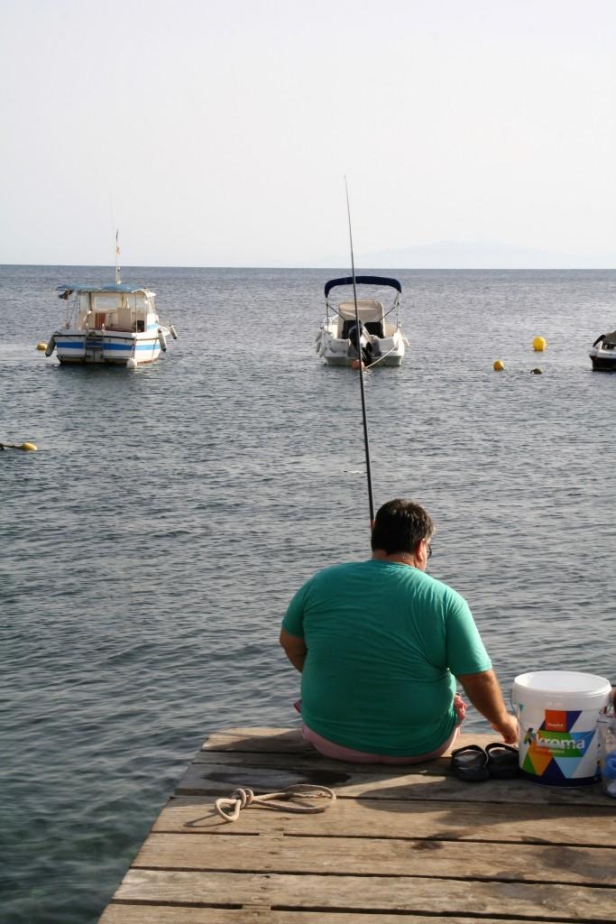 Bardina pesca